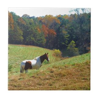 Caballo del blanco y de Brown charca del otoño Teja Ceramica