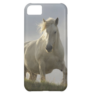 caballo del caso del iphone 5