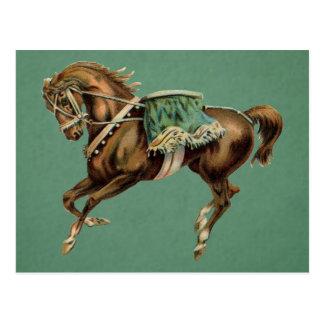 caballo del circo del vintage tarjeta postal