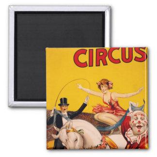 Caballo del circo imán cuadrado