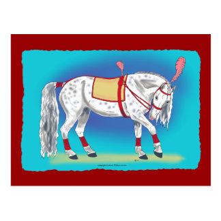 Caballo del circo postales
