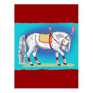 Caballo del circo tarjetas postales