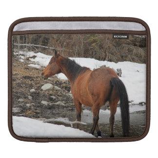 """Caballo del invierno de la bahía """"año foto equina  fundas para iPads"""