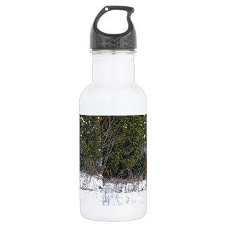 Caballo del invierno en el campo Nevado Botella De Agua