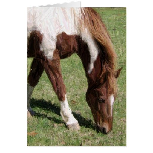 caballo del lápiz tarjeta de felicitación