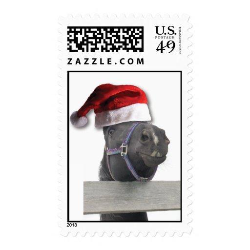 Caballo del navidad con el gorra de Santa Envio