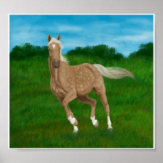 caballo del palomino en prado póster