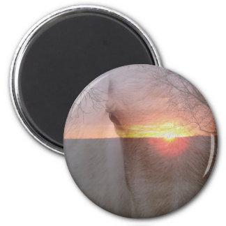 Caballo del Palomino en salida del sol Imán Redondo 5 Cm