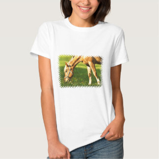 Caballo del Palomino que pasta la camiseta de la Poleras