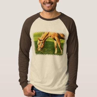 Caballo del Palomino que pasta la camiseta del Poleras