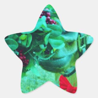 Caballo del trullo del muérdago del navidad pegatina en forma de estrella
