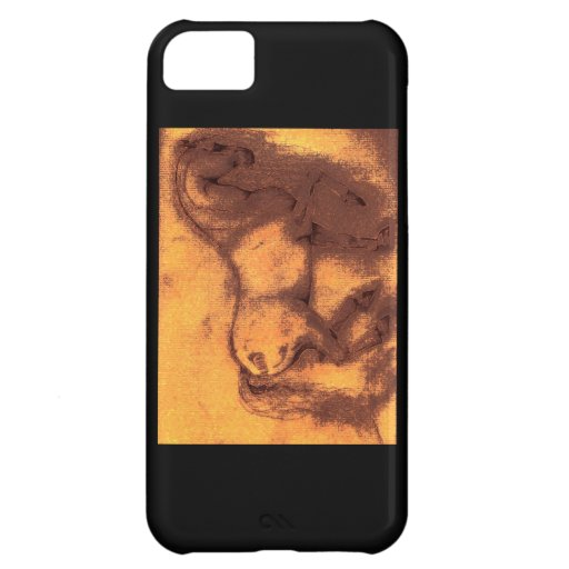 Caballo del Viejo Mundo Carcasa Para iPhone 5C