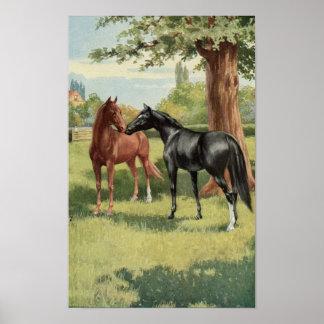 Caballo del vintage el Equestrian de la primera re Póster