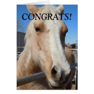 Caballo divertido de la enhorabuena del graduado tarjeta de felicitación
