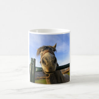 Caballo divertido tazas de café