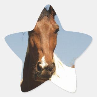 Caballo dulce de la pintura calcomanías forma de estrellaes personalizadas