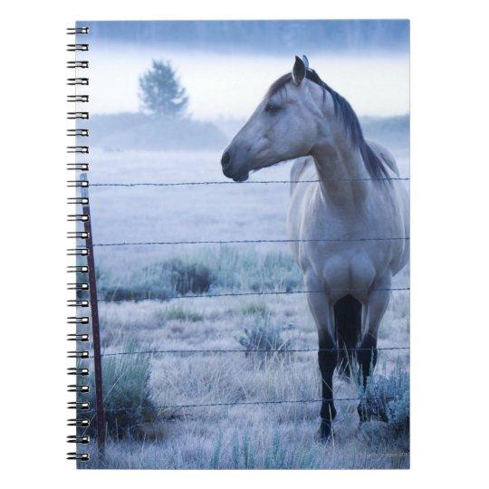 Caballo en campo nebuloso notebook