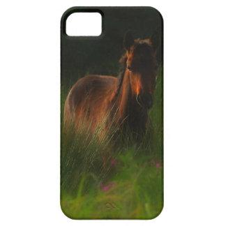 Caballo en campo verde iPhone 5 carcasa