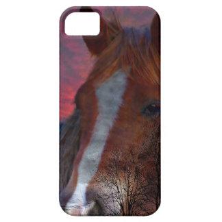 caballo en caso del iphone de la puesta del sol iPhone 5 fundas