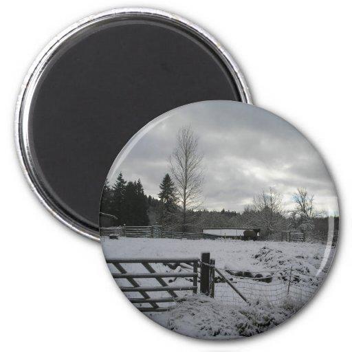 Caballo en el campo Nevado Imán Redondo 5 Cm