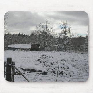 Caballo en el campo Nevado Tapete De Ratones