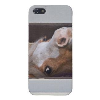 Caballo en el caso del iPhone 4 de los establos iPhone 5 Carcasas