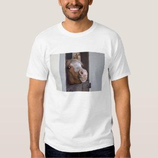 Caballo en la camiseta del adulto de los establos remeras