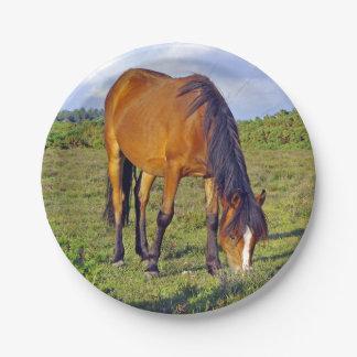 caballo en la placa del prado platos de papel