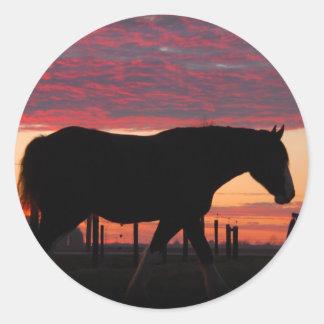 Caballo en la puesta del sol etiquetas redondas