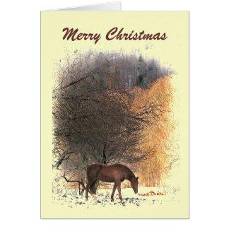 Caballo en navidad del invierno tarjetas
