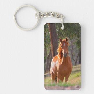 caballo en pasto llavero rectangular acrílico a una cara