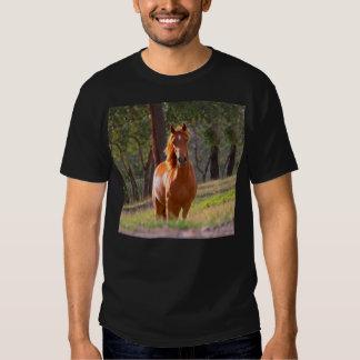 caballo en pasto remera