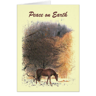 Caballo en paz del invierno en la tierra tarjetas