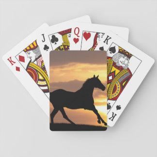 Caballo en puesta del sol barajas de cartas