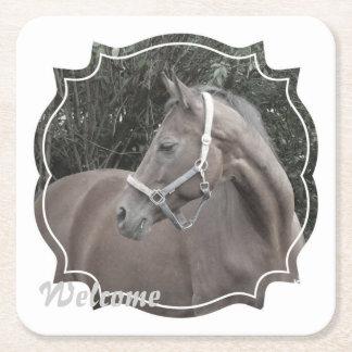 caballo en un marco posavasos personalizable cuadrado