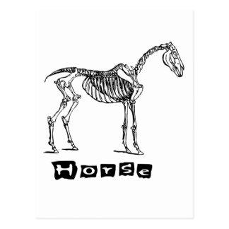 Caballo (esqueleto) postal