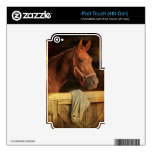 Caballo excelente iPod touch 4G skins