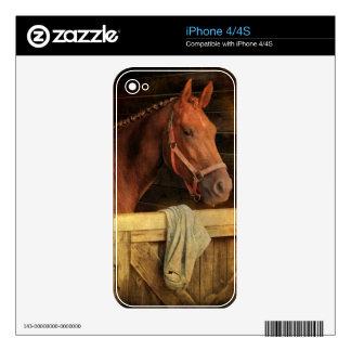 Caballo excelente skin para el iPhone 4