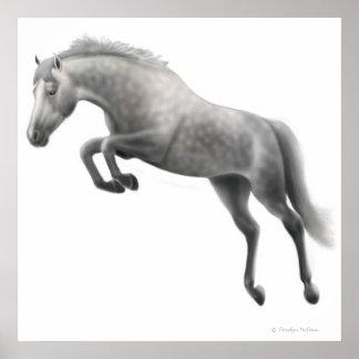Caballo gris Dappled de salto Póster