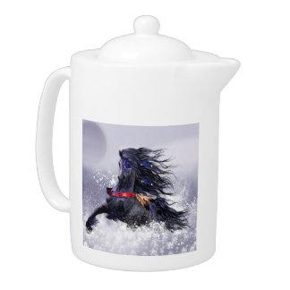 Caballo indio del semental majestuoso azul negro