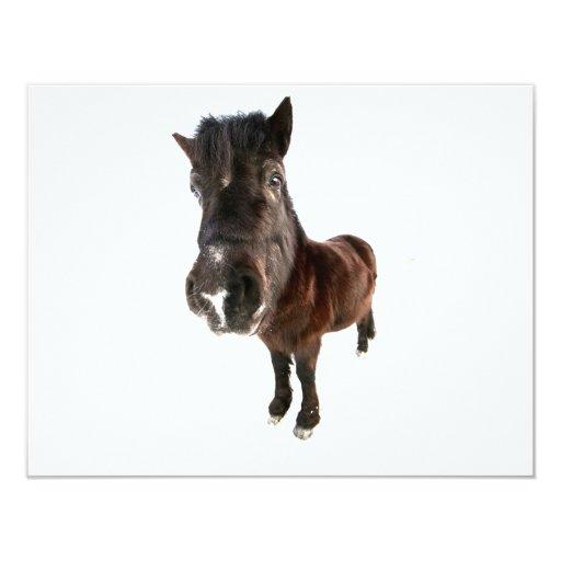 caballo invitación 10,8 x 13,9 cm