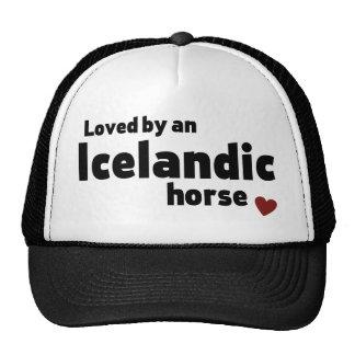 Caballo islandés gorros bordados