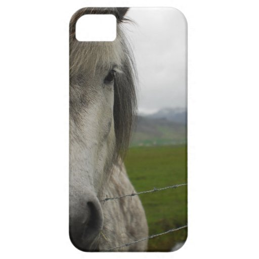 Caballo islandés iPhone 5 cobertura