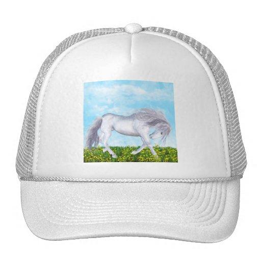 Caballo magnífico y blanco gorro