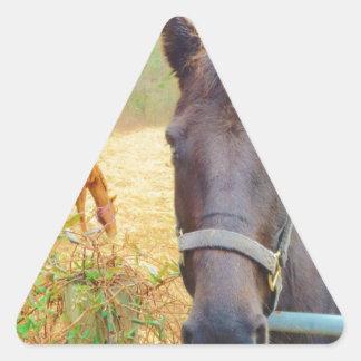 Caballo marrón pegatina triangular