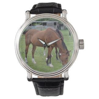 caballo marrón que hace frente a la derecha a relojes de pulsera