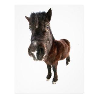 caballo plantillas de membrete