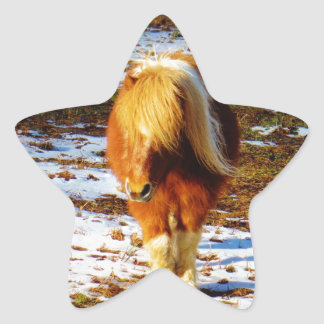 Caballo miniatura de Brown y de la crema en la Colcomanias Forma De Estrellaes