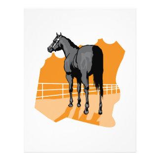 "caballo negro bonito folleto 8.5"" x 11"""
