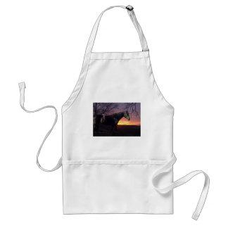 Caballo negro de ForeverMorgans en salida del sol  Delantales
